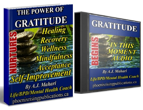 The Power of Gratitude Ebook by A.J. Mahari